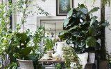 indoor-garden-dining-room-design